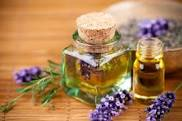 TTN Essential Oils Workshop