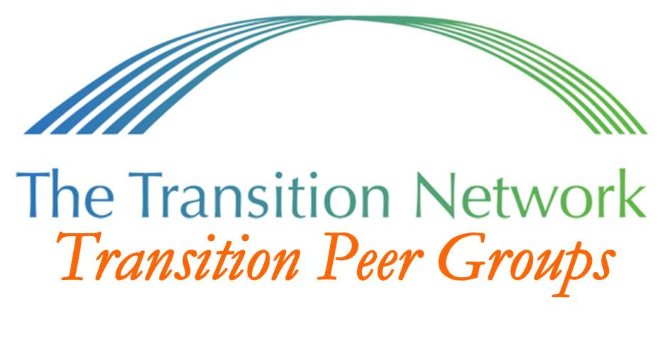 Transition Peer Groups: An Introduction and Orientation