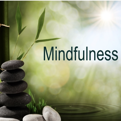 Chicago Chapter Series: Explore Your Inner World through Mindfulness Practices with Jaci McCarty